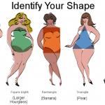 identifyyourshape